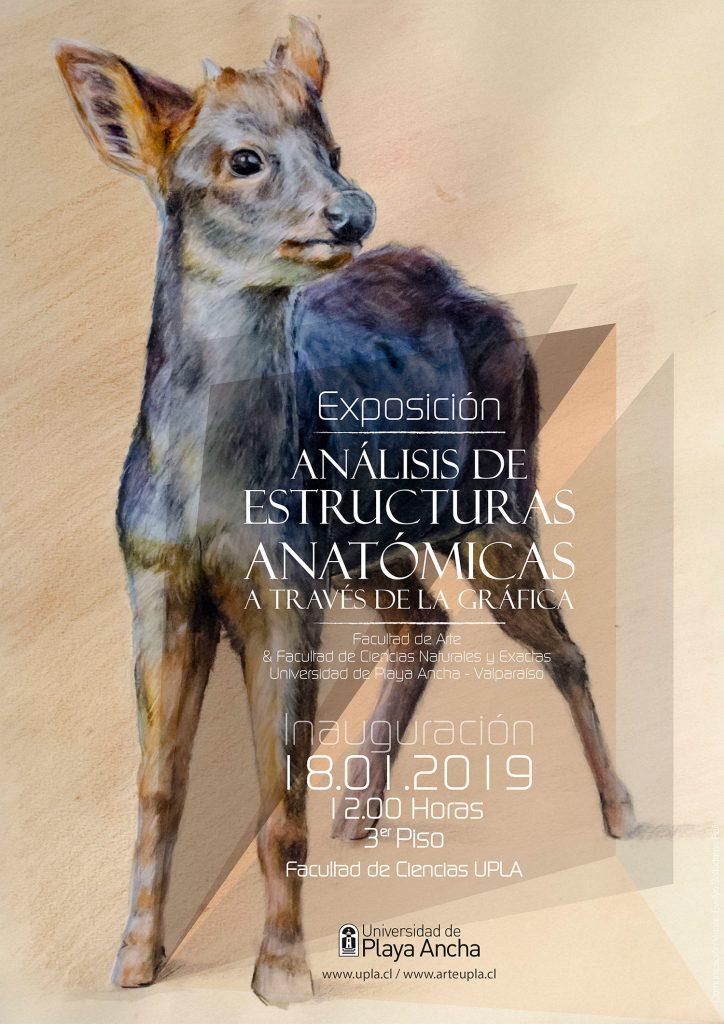 Afiche Expo Arte-Ciencias