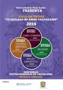 Afiche Ciclo Artístico TMV-2014