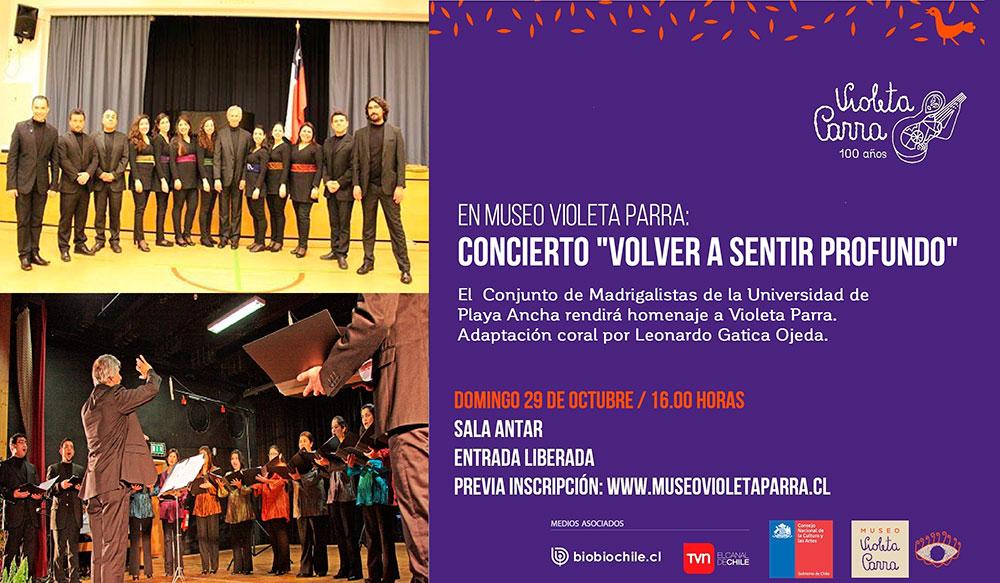 Afiche Museo Violeta Parra