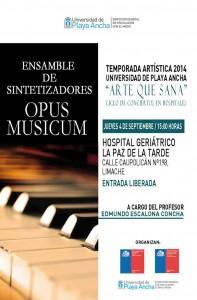 "Afiche Opus Musicum en ""Arte que Sana"""