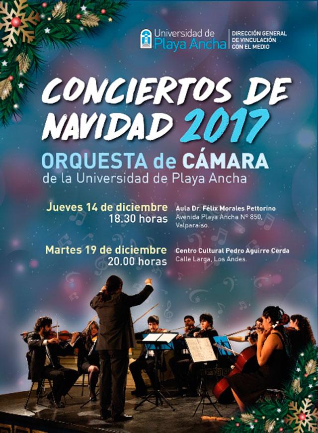Afiche Orquesta de Cámara UPLA