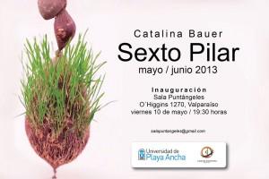 "Afiche ""Sexto Pilar"""