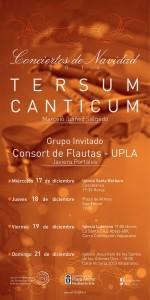 Afiche Conciertos de Navidad Tersum Canticum