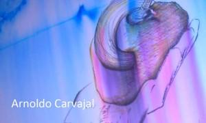 """""""Fragmentos carnales y objetos de deseo"""" de Arnoldo Carvajal"""