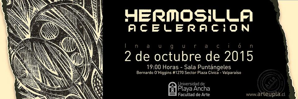 Obras de Carlos Hermosilla se exhibirán en Sala Puntángeles de Valparaíso