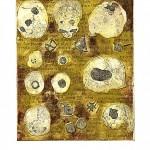 Cráneos de Loreto Soto