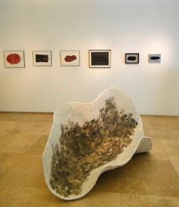 """Exposición """"Tierra Seca"""""""