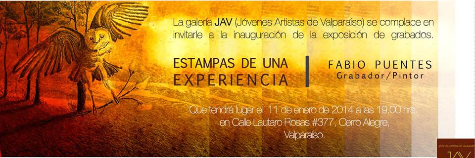 Estudiante de Arte UPLA expondrá en galería JAV de Valparaíso