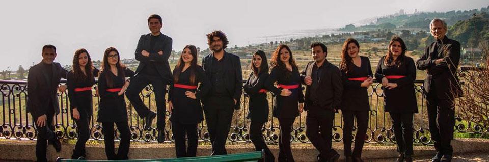Conjunto de Madrigalistas dará concierto homenaje en Museo Violeta Parra