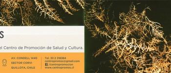 """Exposición """"Anónimos"""" de Felipe Oyaneder se inaugurará en Quillota"""