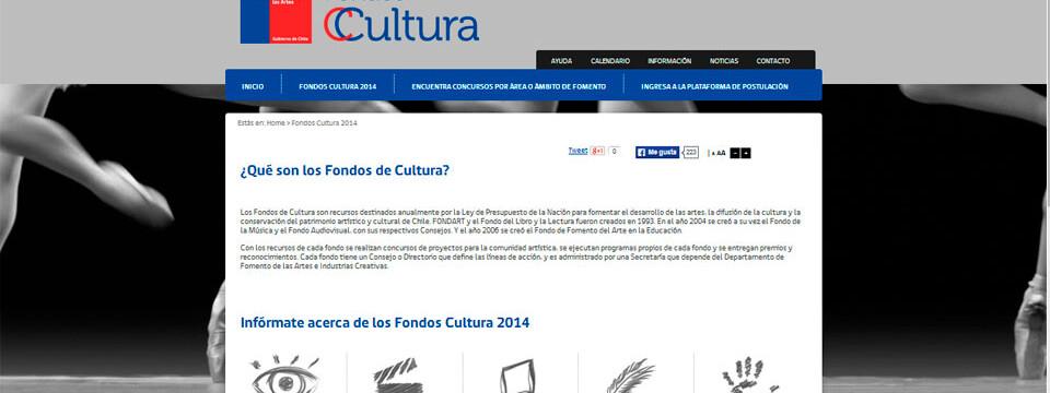 Académicos de Arte UPLA se adjudican Fondos de Cultura 2014